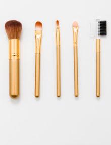 Makeup Brush 5 SET